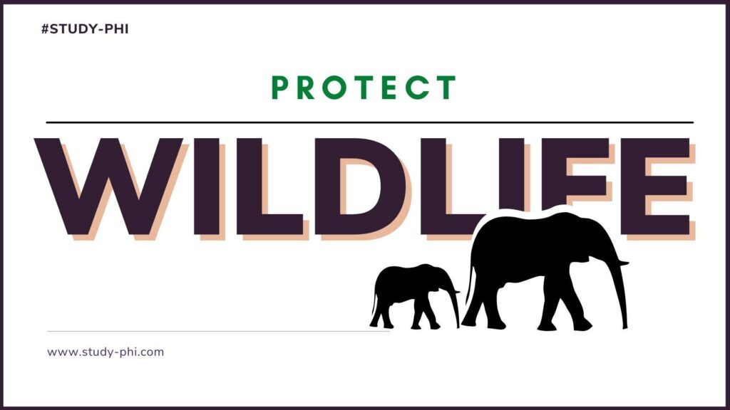 how to protect wildlife