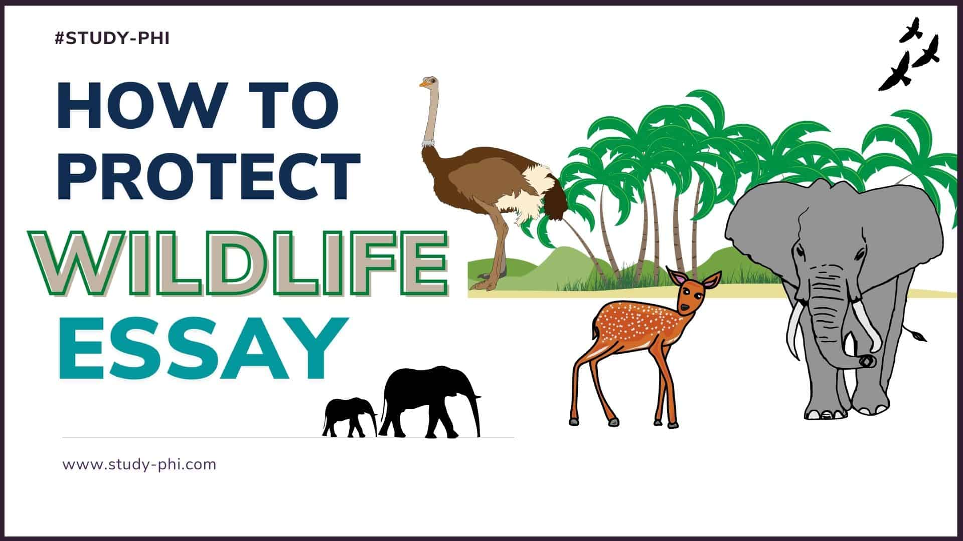 How to Protect Wildlife Essay