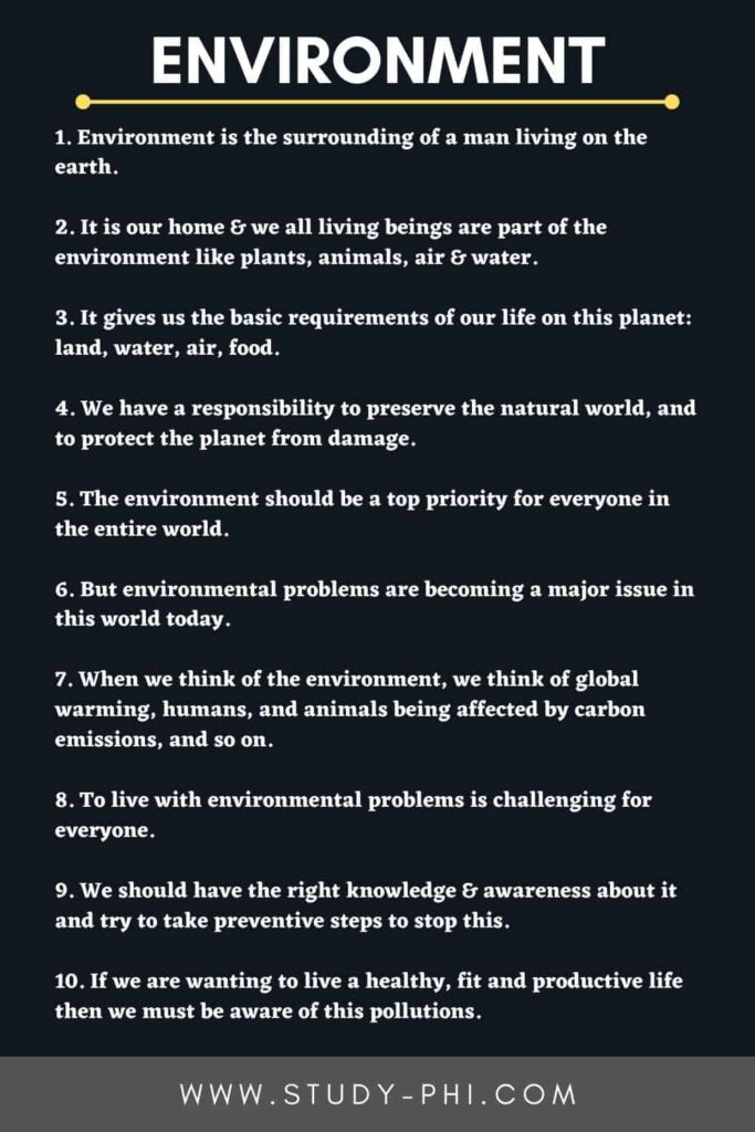 An Essay on Environment