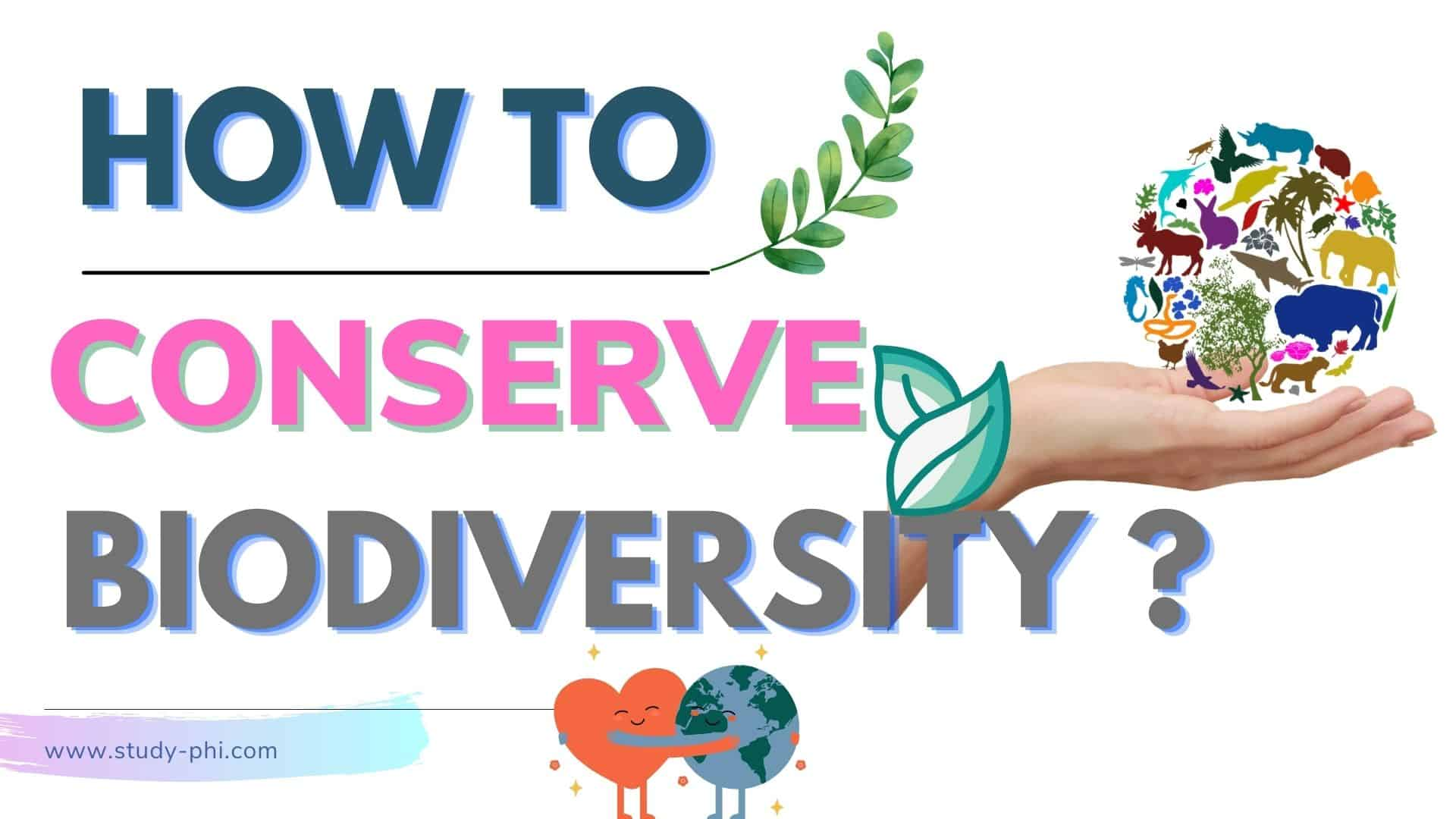 How To Conserve The Biodiversity